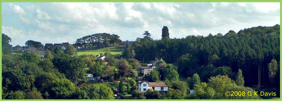 A photo of Bream village looking across the oakwood valley.