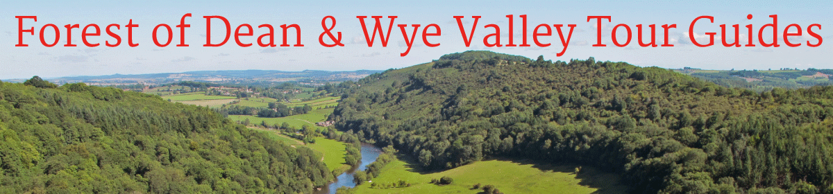 Forest of Dean and Wye Valley Tour Guides