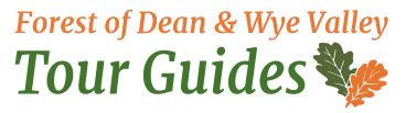 Forest of Dean Guides