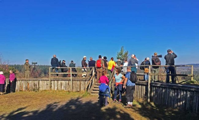 A photo of Goshawk watchers at New Fancy viewpoint