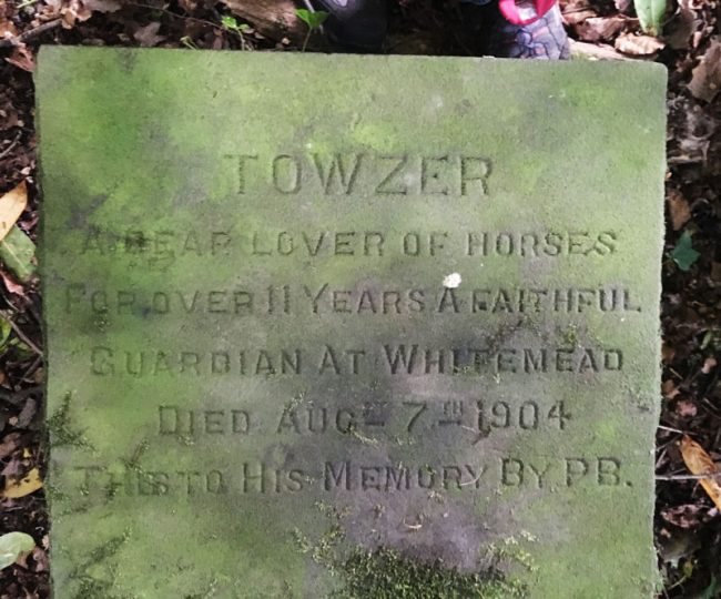 Towzer - a stone to his memory by Philip Baylis