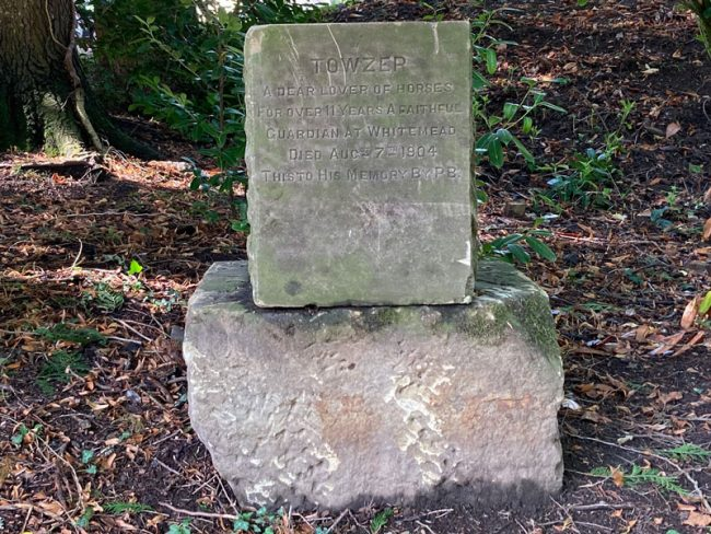 A photo of the memorial to Towzer